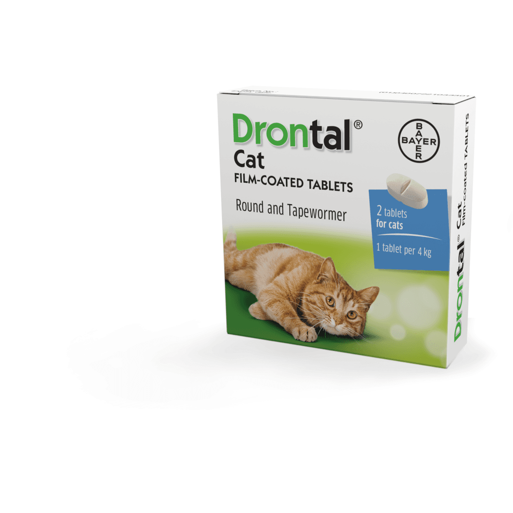 Drontal for Cats Single Tablets -(Price is £2 42 per tablet not for two  tablets)